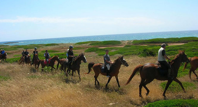 horse-country-sardinia-events2